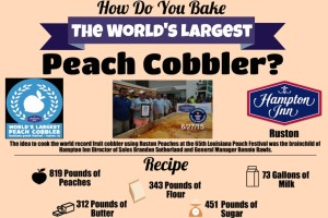 Ruston and the Giant Peach (Cobbler)