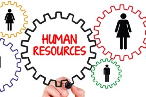 Human Resources/Training